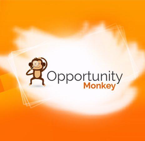 Opportunity Monkey