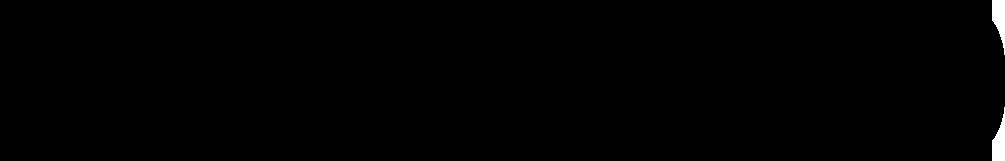 portfolio-text